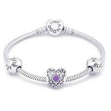 February Birthstone Bracelet B800462