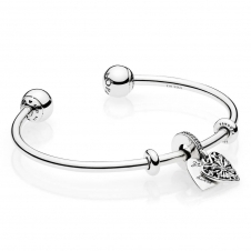 Ice Crystal Heart Open Bangle B800658