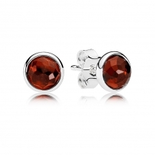 January Droplets Stud Earrings 290738GR