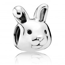 Remarkable Rabbit Charm 791838
